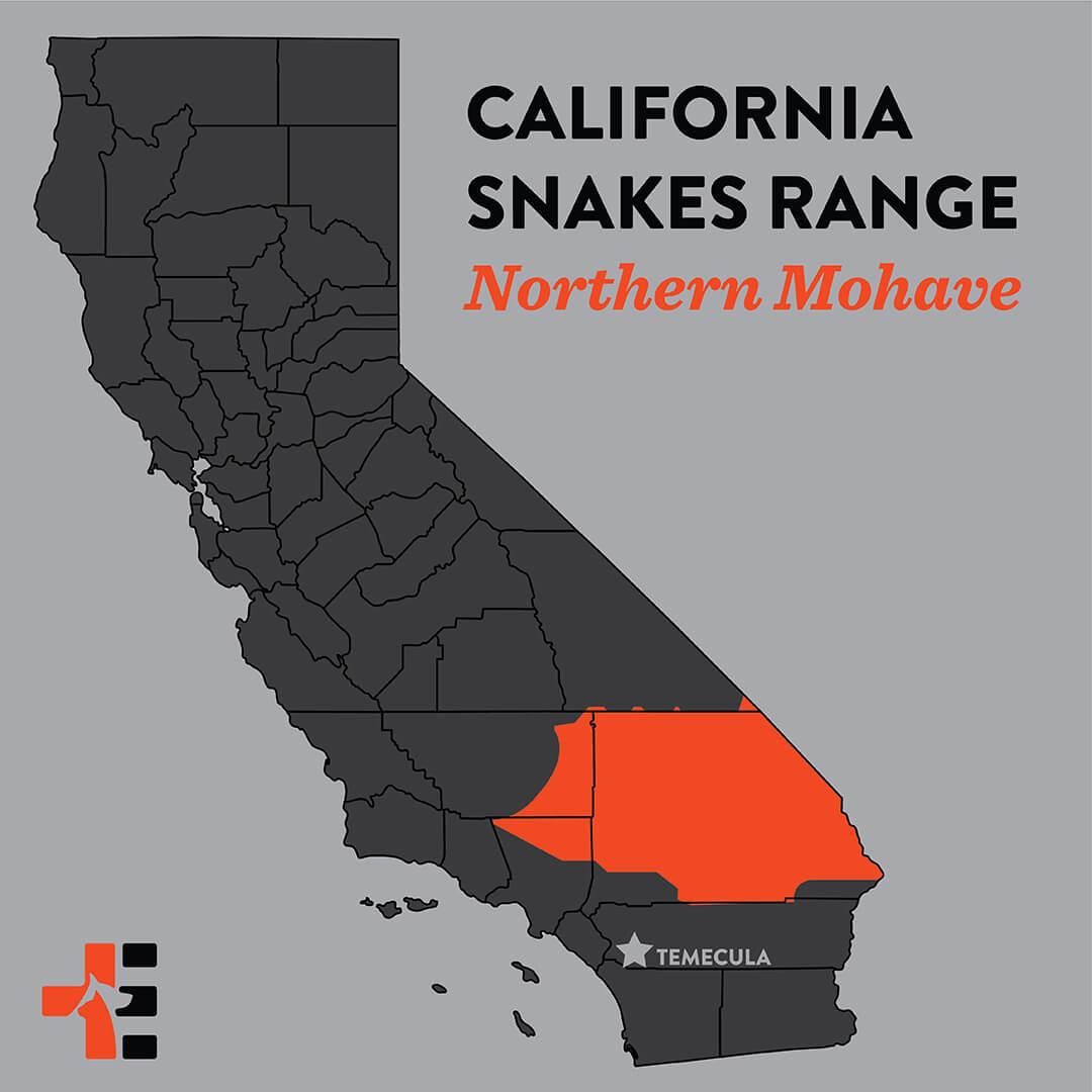 snake map